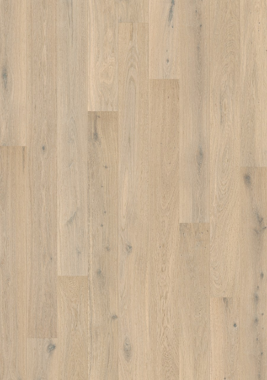 com3098 eiche himalayawei extramatt laminat holz und vinylb den. Black Bedroom Furniture Sets. Home Design Ideas