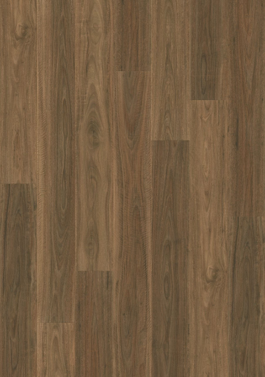 Dark brown Majestic Laminate Spotted Gum MJ4254
