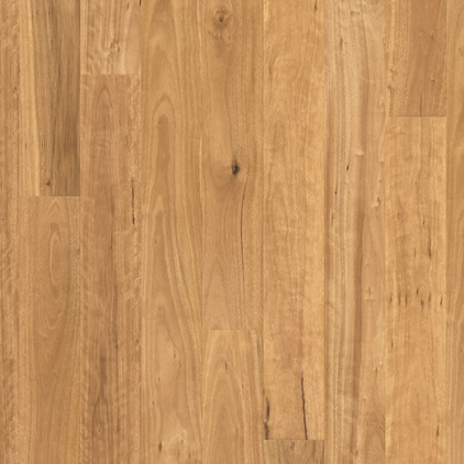 Colonial Plus Laminate Blackbutt COL21000