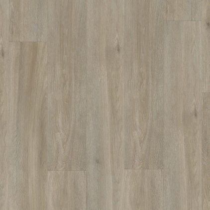 Dark grey Balance Click Vinyl Silk oak grey brown BACL40053
