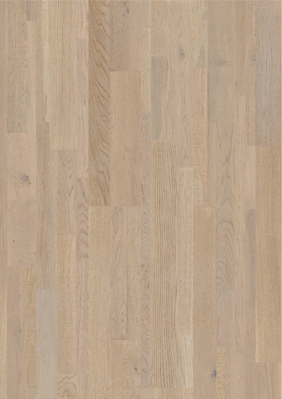 Light grey Variano Hardwood Seashell white oak extra matt VAR3101S