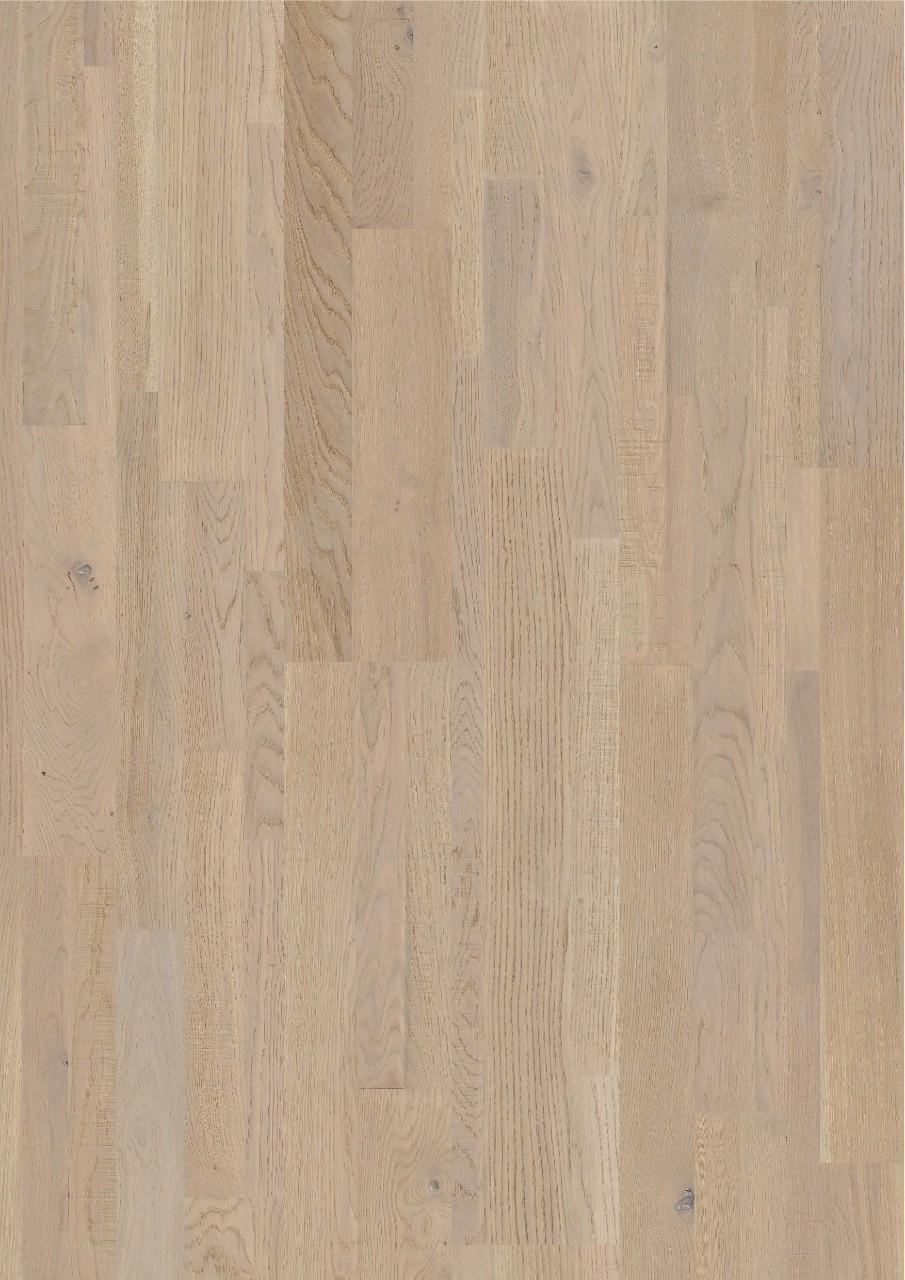 Var3101s Seashell White Oak Extra Matt Beautiful