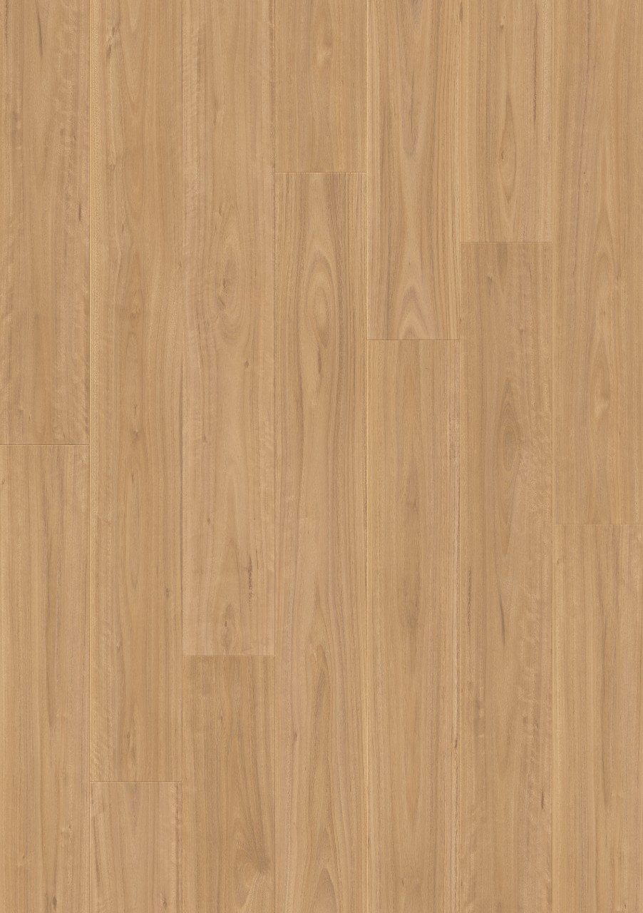 Dark brown Majestic Laminate Blackbutt MJ4253