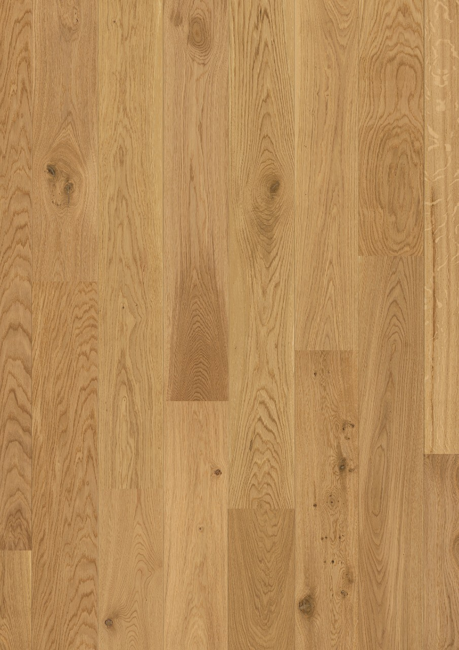 Com1450 Oak Natural Matt Beautiful Laminate Wood
