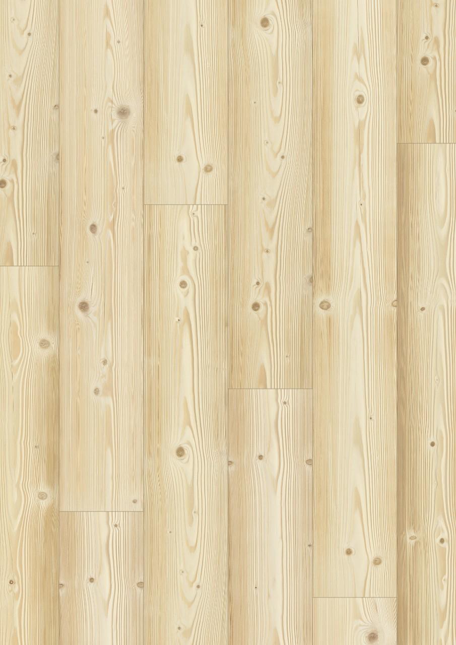 Pinus Natural - Visão Detalhada