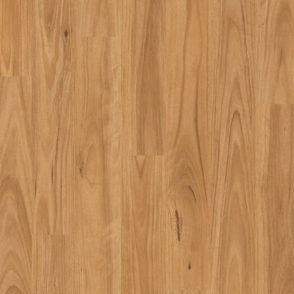 Eligna Laminate Blackbutt EL1691
