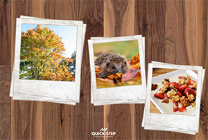 Autumn, the most colourful season. The essence of autmn with walnut