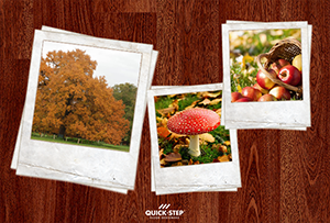 Autumn, the most colorful season. A sense of warmth with Merbau